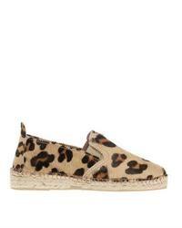 Alpargatas de leopardo original 4346861
