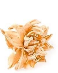 Broche con print de flores amarillo de Cavallini